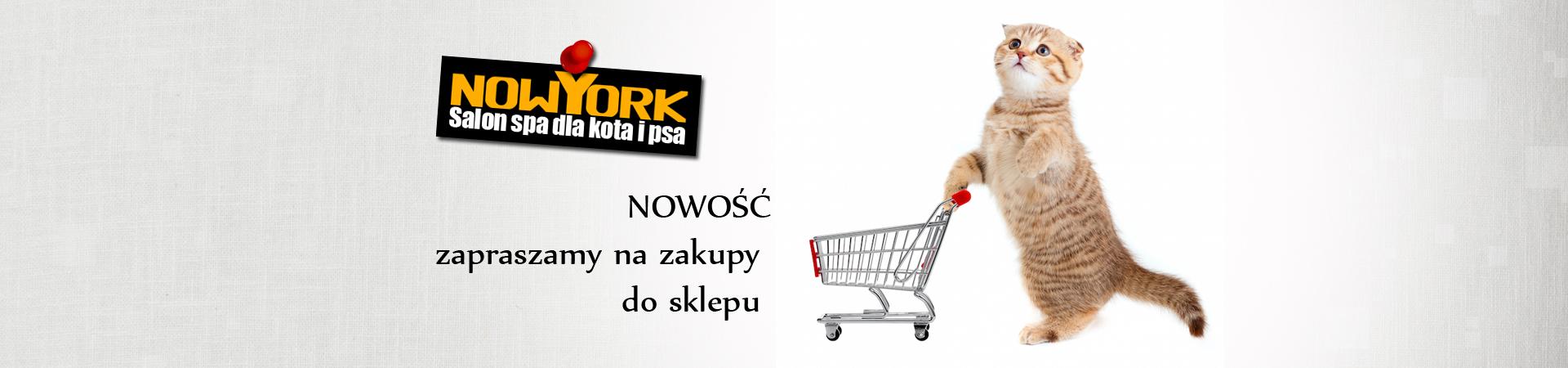 newSLIDER6-kopia